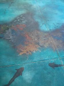 Fish floor - Conways